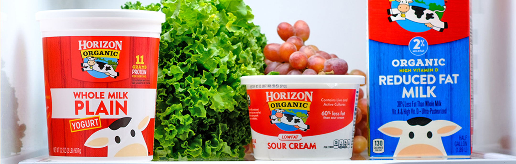 Horizon Organic Dairy Products - Milk, Cheese, Butter, and more