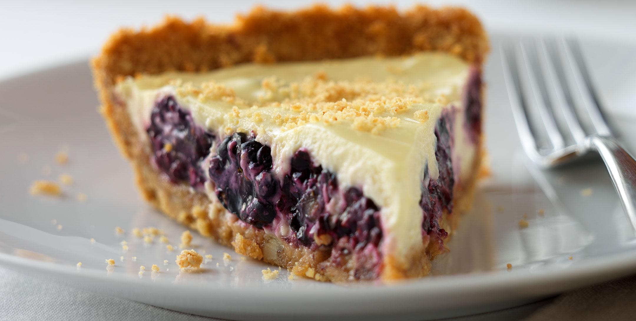 Blackberry Yogurt Pie